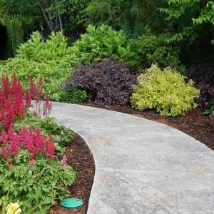 Glenn Landscape Plantings & Pathways