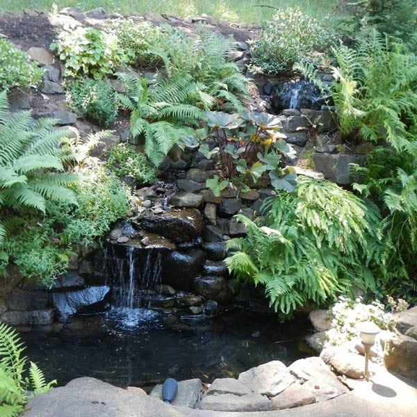 Glenn Landscape Services Water Feature