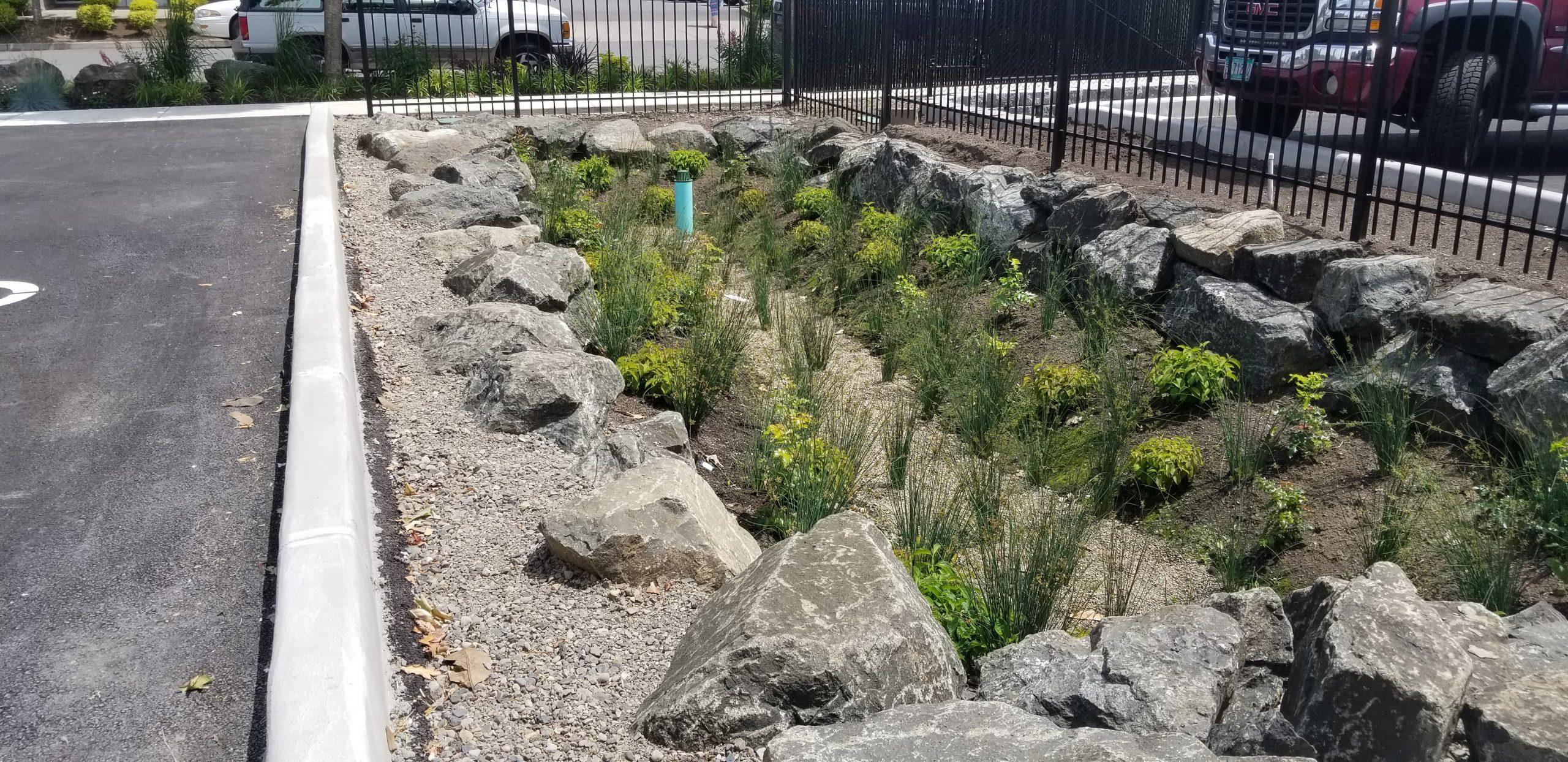 Hot Springs Landscape planting